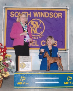 Siena South Windsor KC 2014