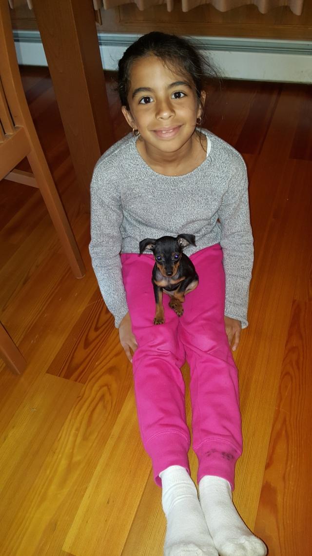 black-puppy3